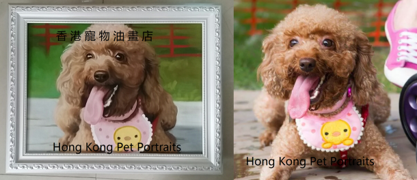 poodle with company name